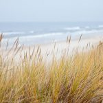 Autumn Vacation in Ocean Isle Beach North Carolina