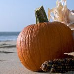 Thanksgiving on the Beach